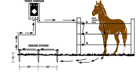 Electric Horse Farm Fence Product Properties - Electrobraid