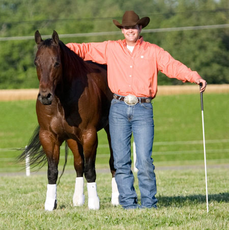 Perfect photos of anderson horse training taken last month
