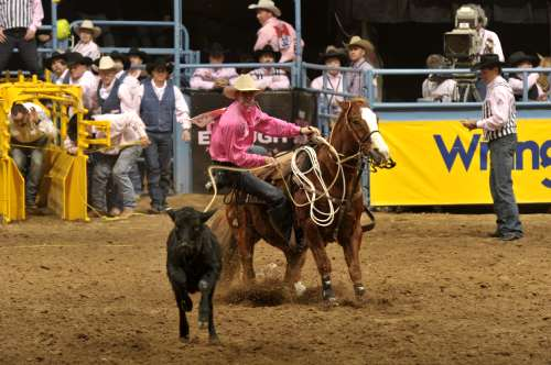 Equisearch Gt News Gt Nfr 2010 Equisearch